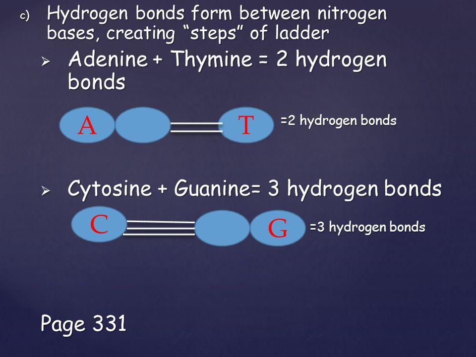 c) Hydrogen bonds form between nitrogen bases, creating steps of ladder  Adenine + Thymine = 2 hydrogen bonds =2 hydrogen bonds =2 hydrogen bonds  Cytosine + Guanine= 3 hydrogen bonds =3 hydrogen bonds =3 hydrogen bonds Page 331 AT C G