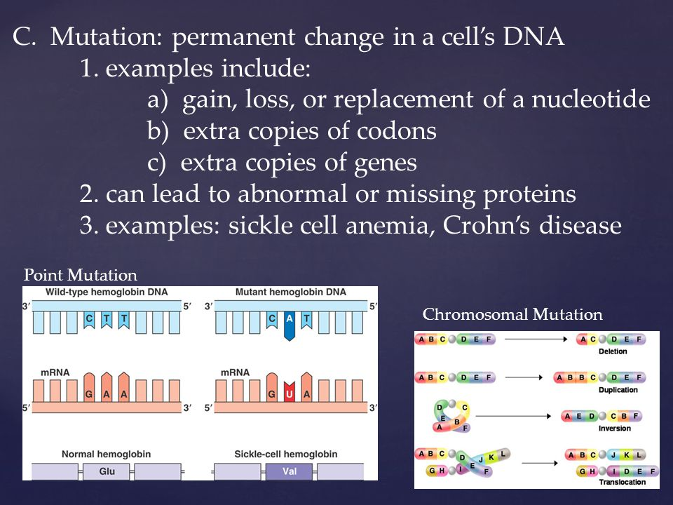 C. Mutation: permanent change in a cell's DNA 1.