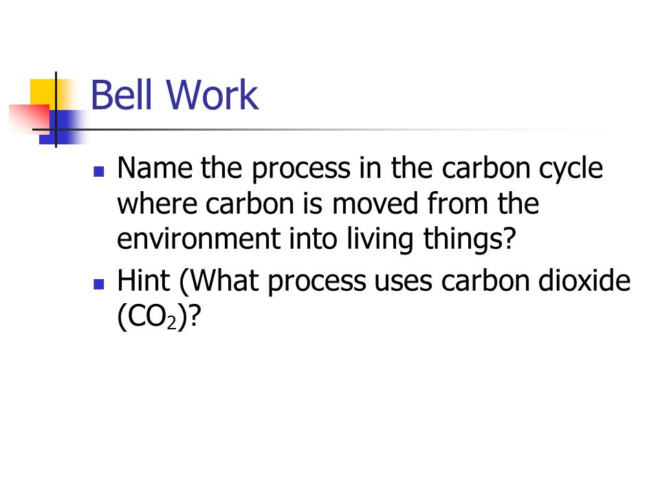 Bell Work Name the process in the carbon cycle where carbon is moved from the environment into living things.