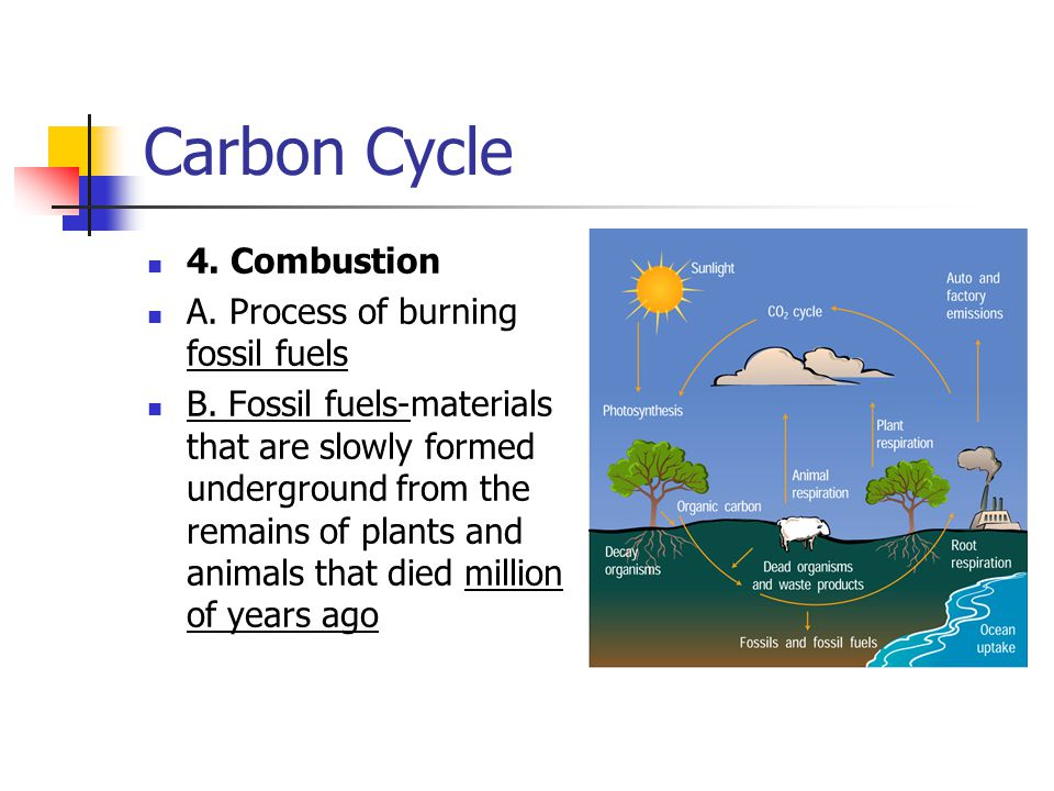 Carbon Cycle 4.Combustion A. Process of burning fossil fuels B.