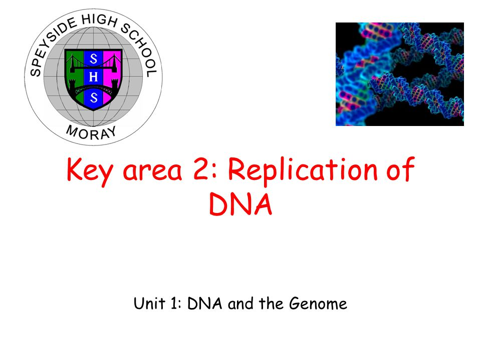 Unit 1: DNA and the Genome Key area 2: Replication of DNA