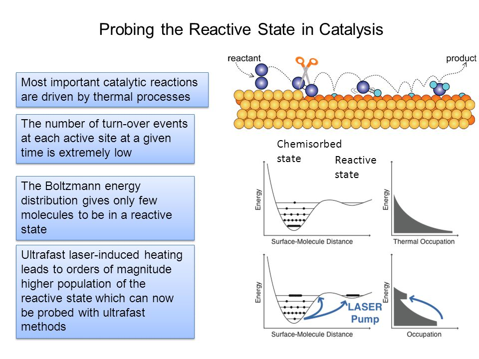 Most important catalytic reactions are driven by thermal processes Most important catalytic reactions are driven by thermal processes The number of turn-over events at each active site at a given time is extremely low The Boltzmann energy distribution gives only few molecules to be in a reactive state Ultrafast laser-induced heating leads to orders of magnitude higher population of the reactive state which can now be probed with ultrafast methods Chemisorbed state Reactive state Probing the Reactive State in Catalysis