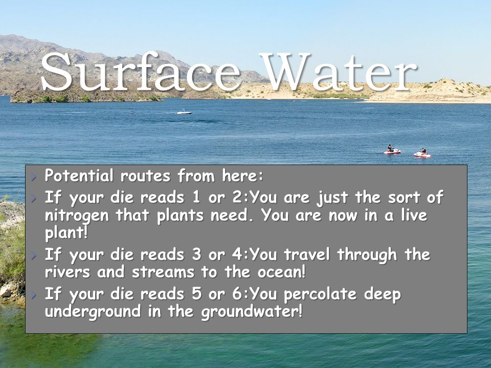 Surface Water  Potential routes from here:  If your die reads 1 or 2:You are just the sort of nitrogen that plants need.