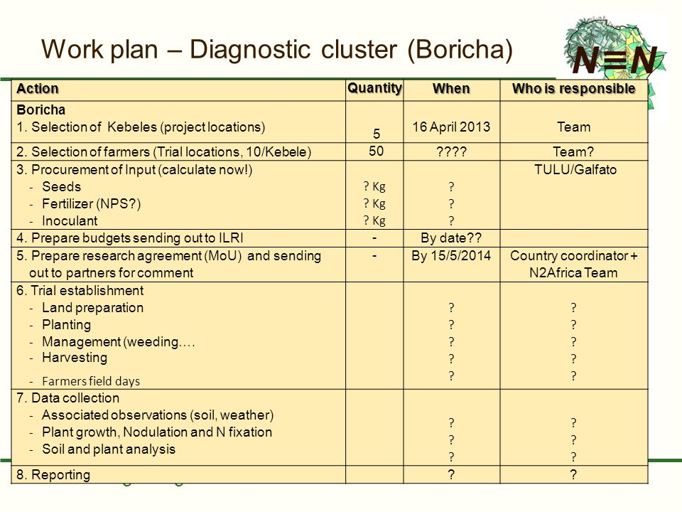 Putting nitrogen fixation to work for smallholder farmers in Africa Work plan – Diagnostic cluster (Boricha) ActionQuantityWhen Who is responsible Bor