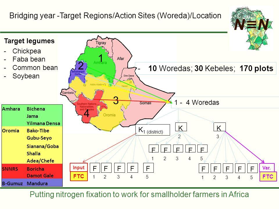 Putting nitrogen fixation to work for smallholder farmers in Africa Bridging year -Target Regions/Action Sites (Woreda)/Location 1 3 4 2 1 - 4 Woredas K 1 (district) K2K2 K3K3 -10 Woredas; 30 Kebeles; 170 plots F1F1 F2F2 F3F3 F4F4 F5F5 F1F1 F2F2 F3F3 F4F4 F5F5 Input F1F1 F2F2 F3F3 F4F4 F5F5 Var.