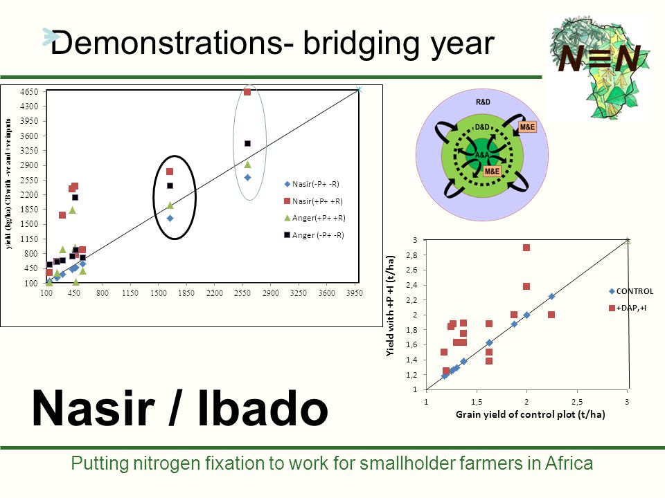 Putting nitrogen fixation to work for smallholder farmers in Africa Work plan: Diagnosis Activity cluster – Boricha Actions: 1.Procurement of inputs (seeds, fertilizer, inoculant required) -Calculate amount of each needed/trial location (farmer plot) and then for 50 formers plot -Total Trial locations (Farmers Plots) = 50 (10 farmers per Kebele) -Variety = Nasir -Treatment 4 (+P+R, +P-R, -P+R, -P-R) but NPS/DAP.