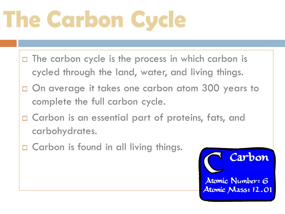 The Carbon Cycle  The carbon cycle is the process in which carbon is cycled through the land, water, and living things.  On average it takes one car