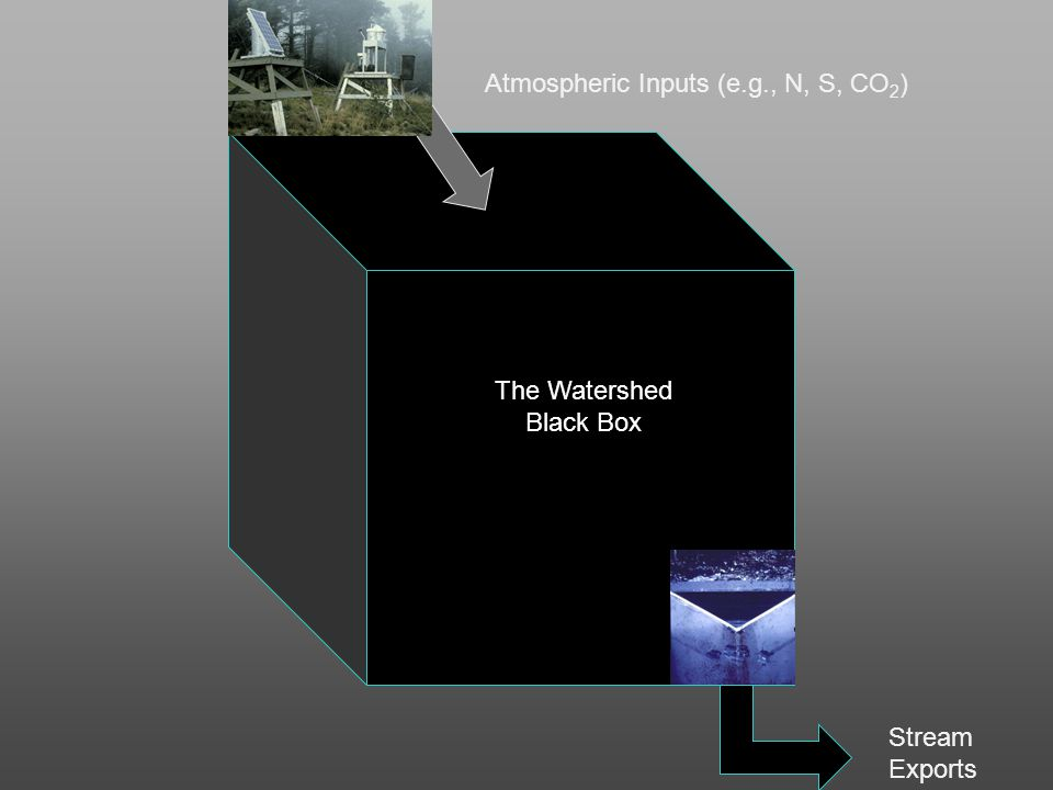Atmospheric Inputs (e.g., N, S, CO 2 ) Stream Exports The Watershed Black Box
