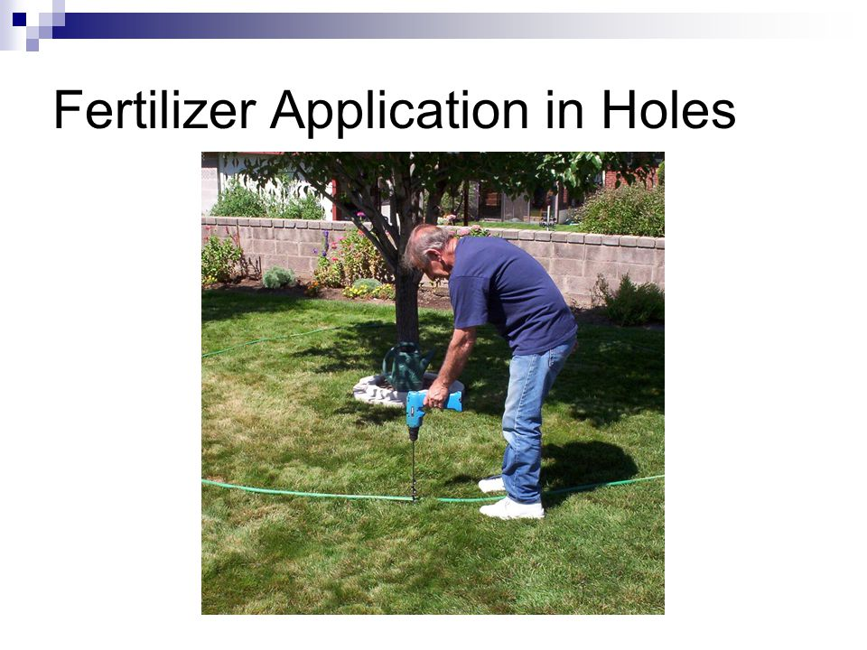 Fertilizer Application in Holes