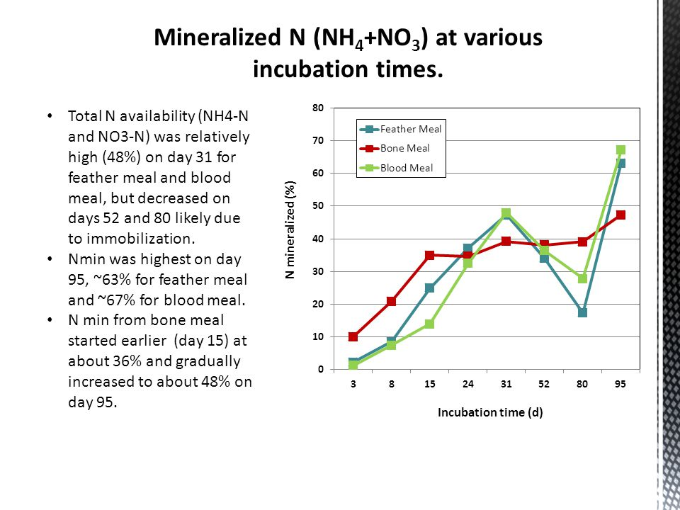 Mineralized N (NH 4 +NO 3 ) at various incubation times. Total N availability (NH4-N and NO3-N) was relatively high (48%) on day 31 for feather meal a