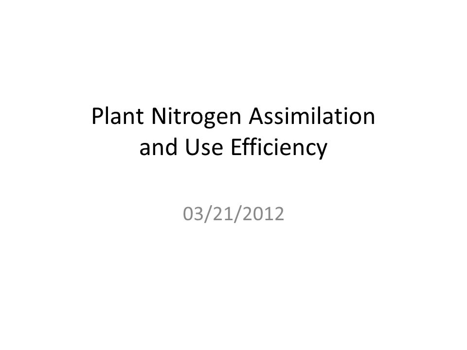 Plant Nitrogen Assimilation and Use Efficiency 03/21/2012