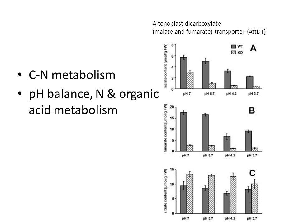 C-N metabolism pH balance, N & organic acid metabolism A tonoplast dicarboxylate (malate and fumarate) transporter (AttDT)