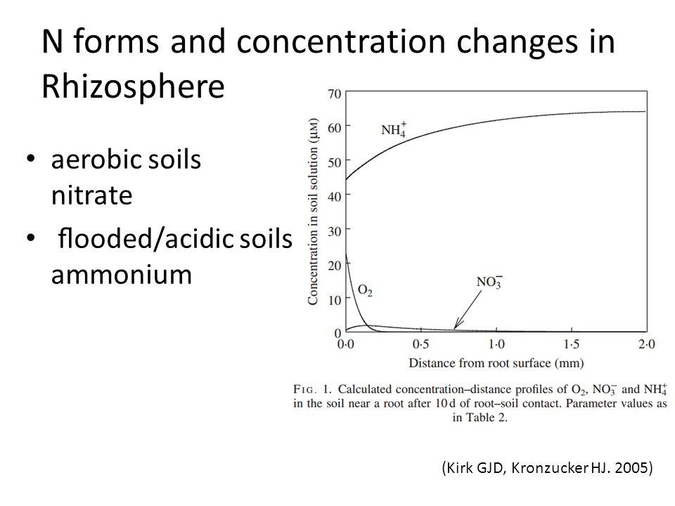 aerobic soils nitrate flooded/acidic soils ammonium (Kirk GJD, Kronzucker HJ. 2005) N forms and concentration changes in Rhizosphere