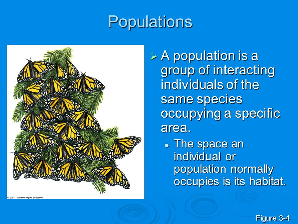 Populations  A population is a group of interacting individuals of the same species occupying a specific area. The space an individual or population
