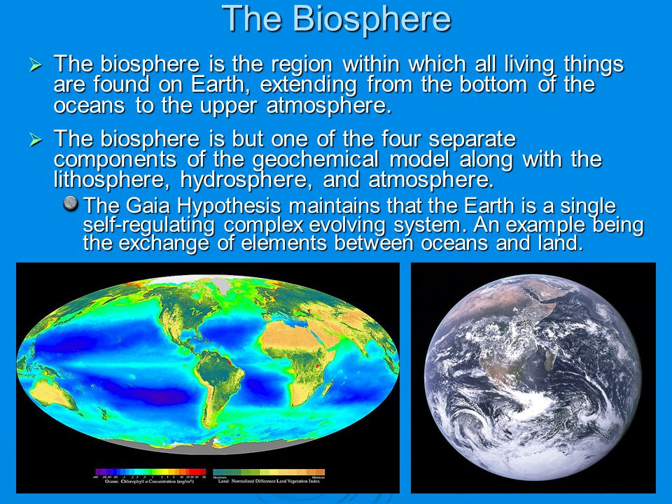  The biosphere is the region within which all living things are found on Earth, extending from the bottom of the oceans to the upper atmosphere.  Th