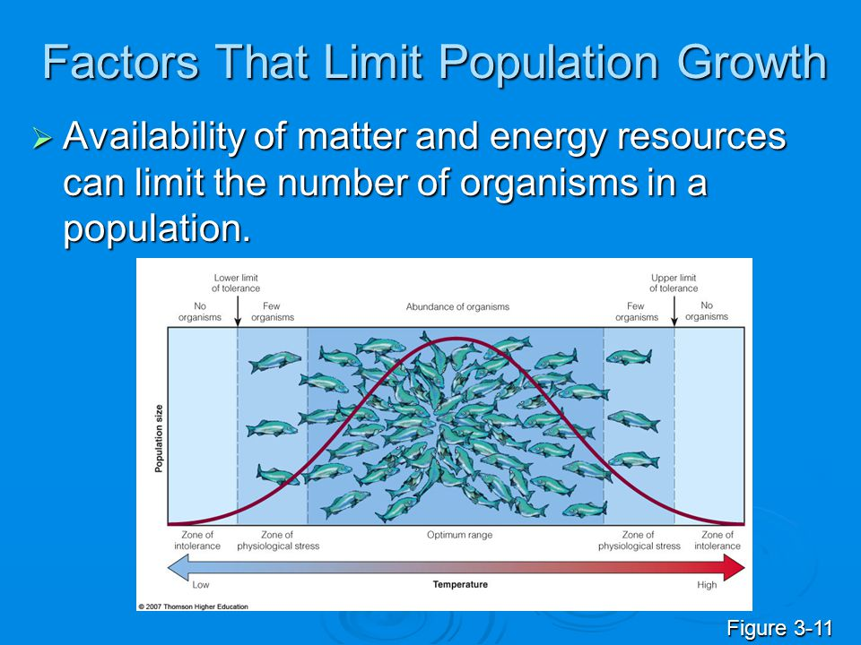 Factors That Limit Population Growth  Availability of matter and energy resources can limit the number of organisms in a population. Figure 3-11