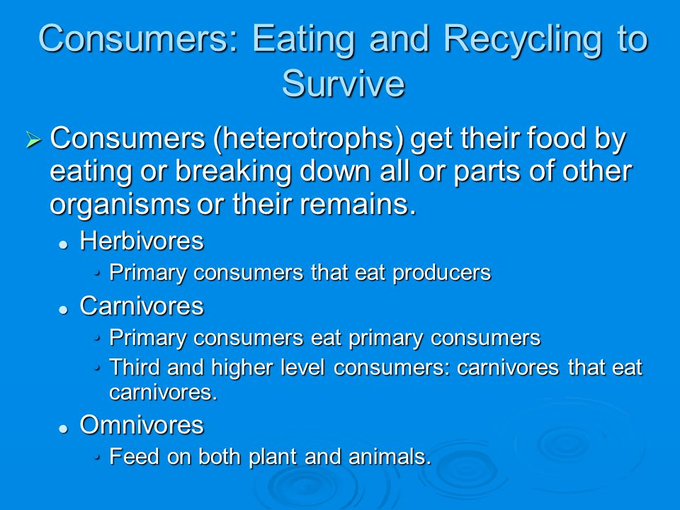 Consumers: Eating and Recycling to Survive  Consumers (heterotrophs) get their food by eating or breaking down all or parts of other organisms or the