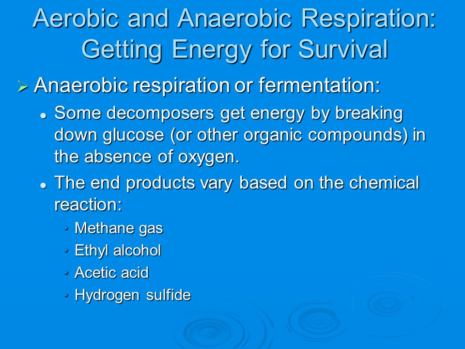 Aerobic and Anaerobic Respiration: Getting Energy for Survival  Anaerobic respiration or fermentation: Some decomposers get energy by breaking down g