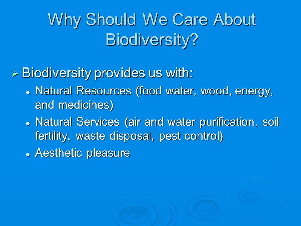 Why Should We Care About Biodiversity?  Biodiversity provides us with: Natural Resources (food water, wood, energy, and medicines) Natural Resources