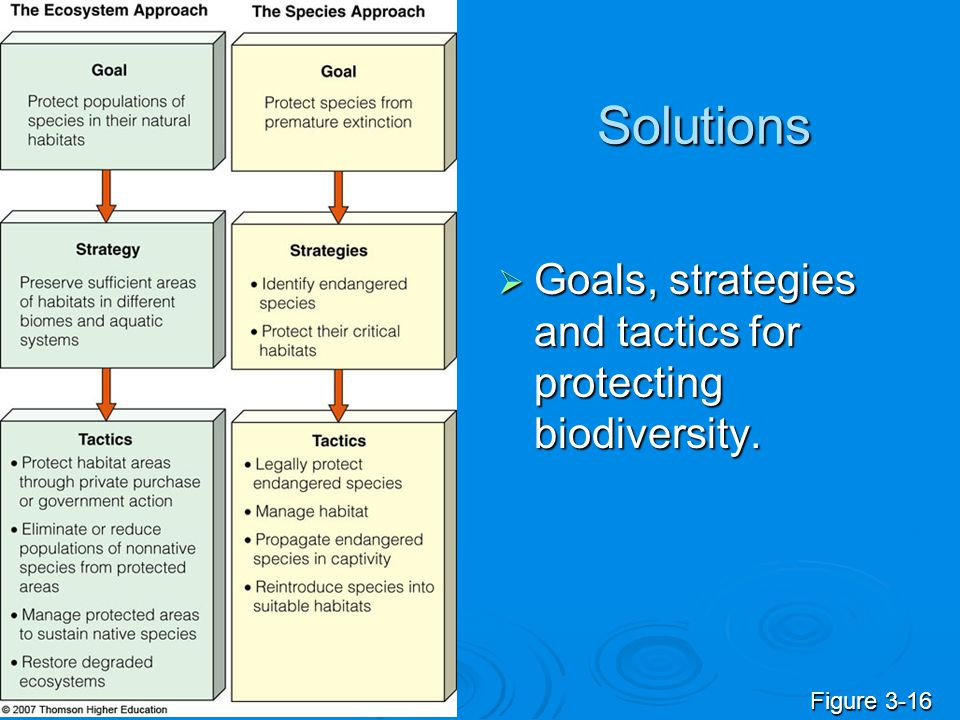 Solutions  Goals, strategies and tactics for protecting biodiversity. Figure 3-16