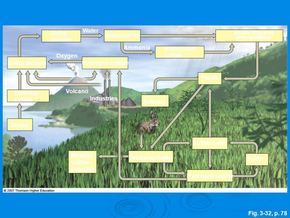 Fig. 3-32, p. 78 Hydrogen sulfide Sulfur Sulfate salts Decaying matter Animals Plants Ocean Industries Volcano Hydrogen sulfide Oxygen Dimethyl sulfid