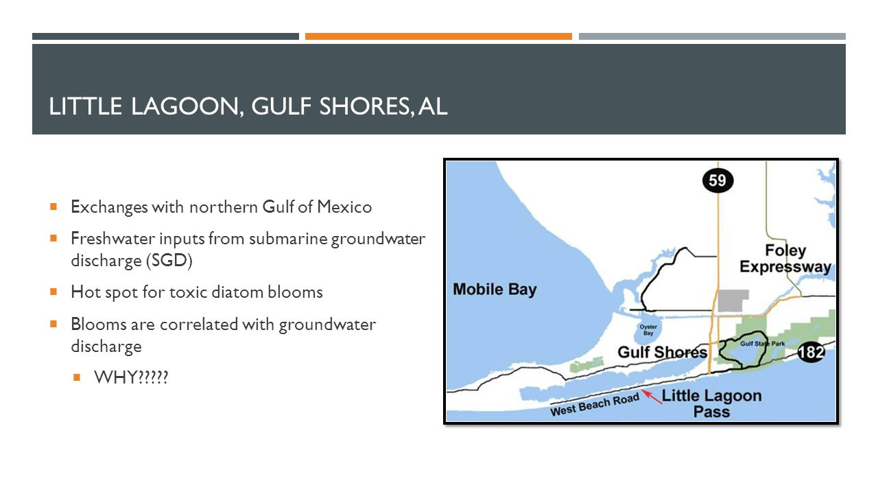 LITTLE LAGOON, GULF SHORES, AL  Exchanges with northern Gulf of Mexico  Freshwater inputs from submarine groundwater discharge (SGD)  Hot spot for