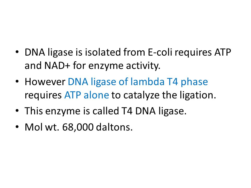 DNA Ligase DNA ligase is an enzyme that joins the ends of two duplex DNA to make a long DNA.