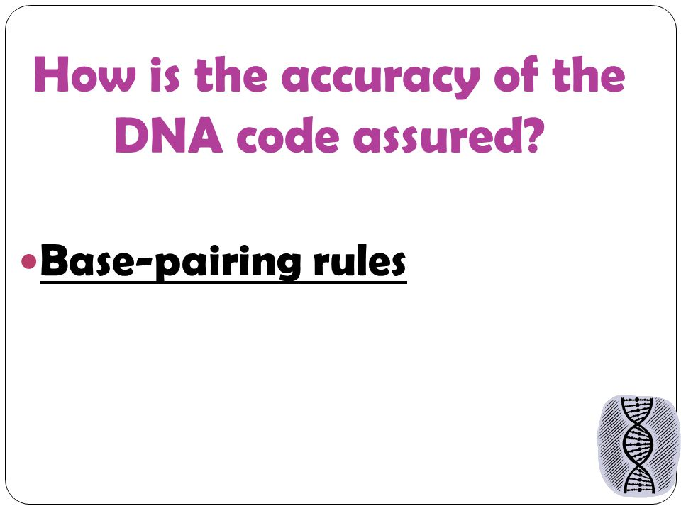 How is the accuracy of the DNA code assured Base-pairing rules