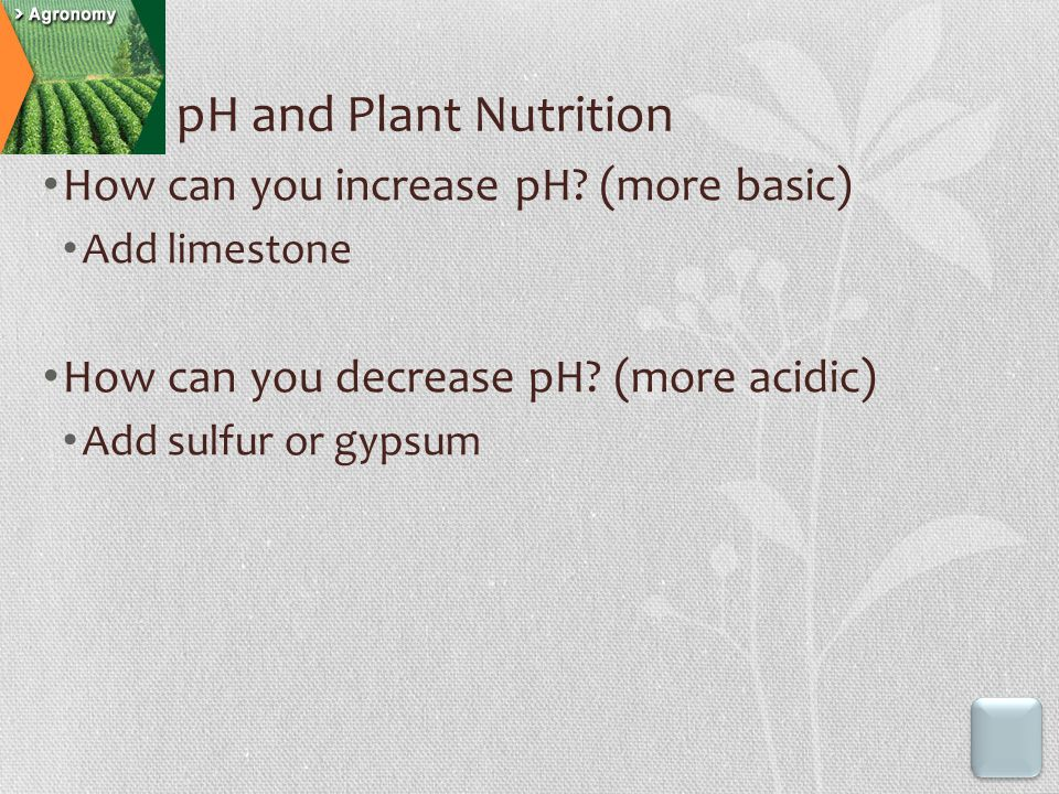 How can you increase pH? (more basic) Add limestone How can you decrease pH? (more acidic) Add sulfur or gypsum pH and Plant Nutrition