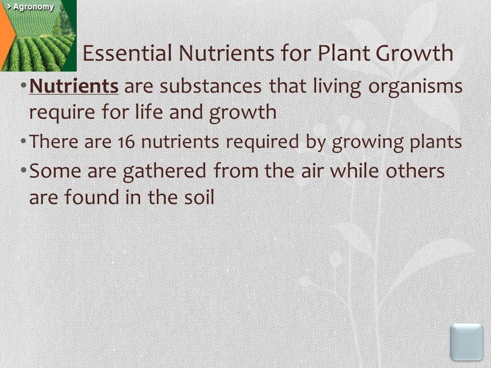 Essential Nutrients for Plant Growth Nutrients are substances that living organisms require for life and growth There are 16 nutrients required by growing plants Some are gathered from the air while others are found in the soil
