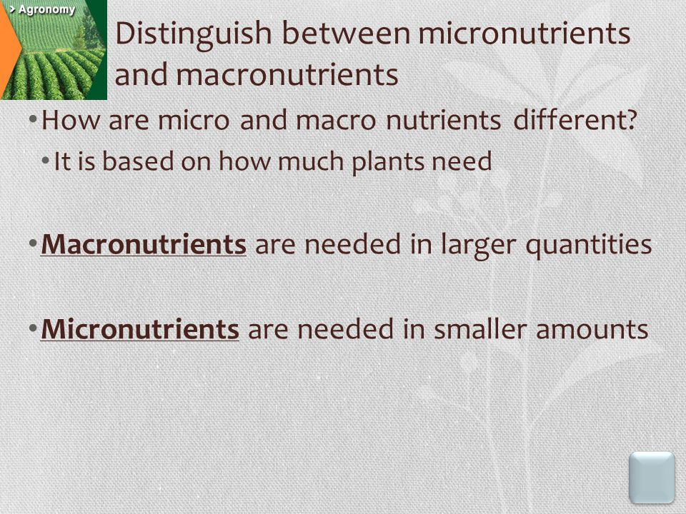 How are micro and macro nutrients different.