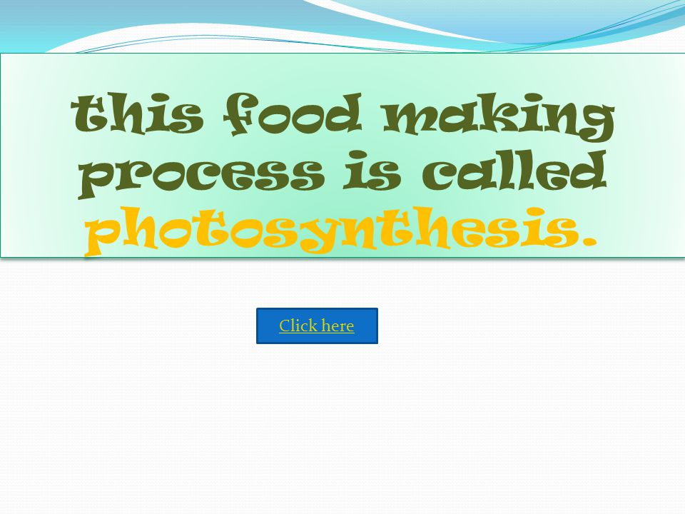 this food making process is called photosynthesis.