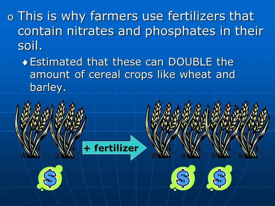 o This is why farmers use fertilizers that contain nitrates and phosphates in their soil.