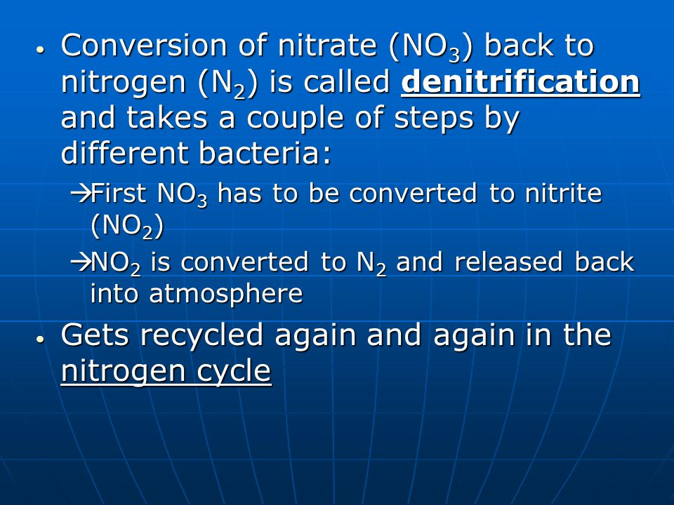 N 2 Nitrogen gas NITROGEN FIXATION fertilizers decomposers Nitrogen in protein bacteria NO 3 & NO 2 Nitrates & Nitrites feeding DENITRIFICATION NITROGEN FIXATION