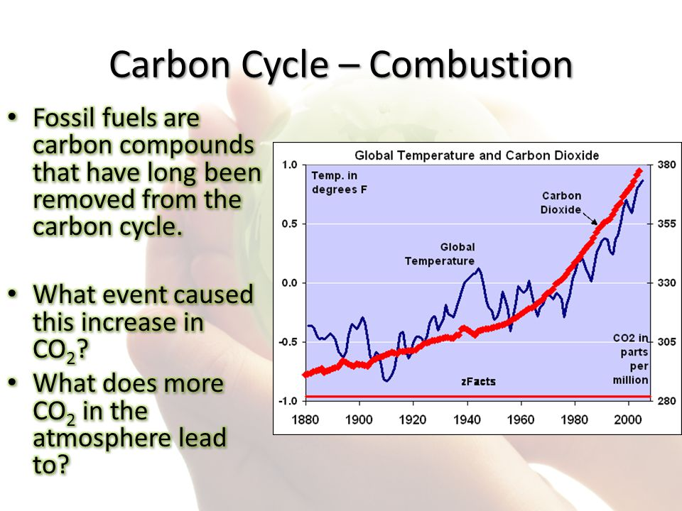 Carbon Cycle – Combustion