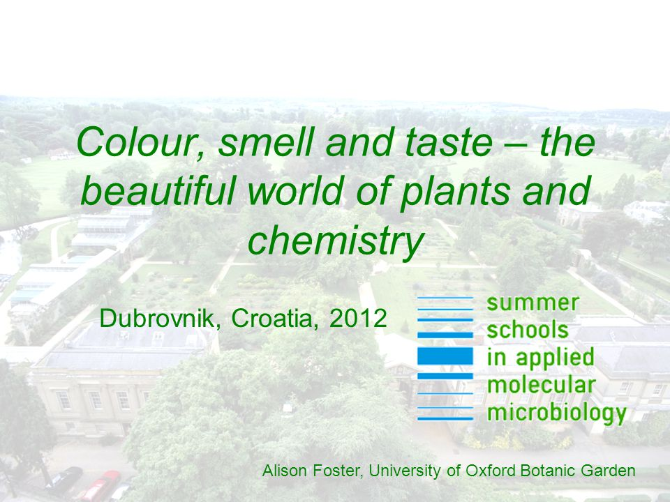 Colour, smell and taste – the beautiful world of plants and chemistry Alison Foster, University of Oxford Botanic Garden Dubrovnik, Croatia, 2012