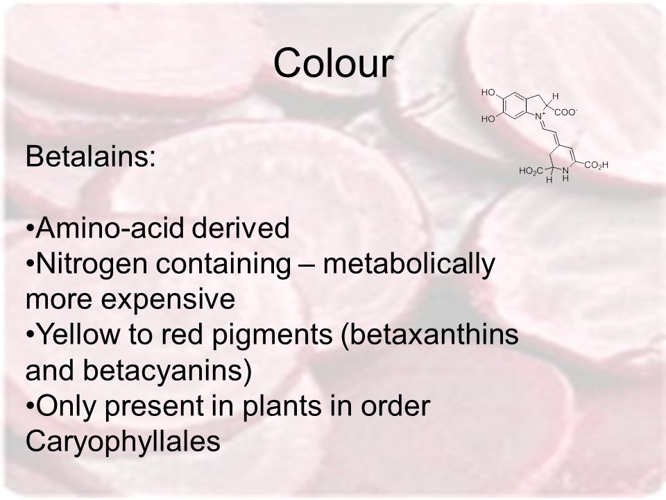 Colour Betalains: Amino-acid derived Nitrogen containing – metabolically more expensive Yellow to red pigments (betaxanthins and betacyanins) Only pre
