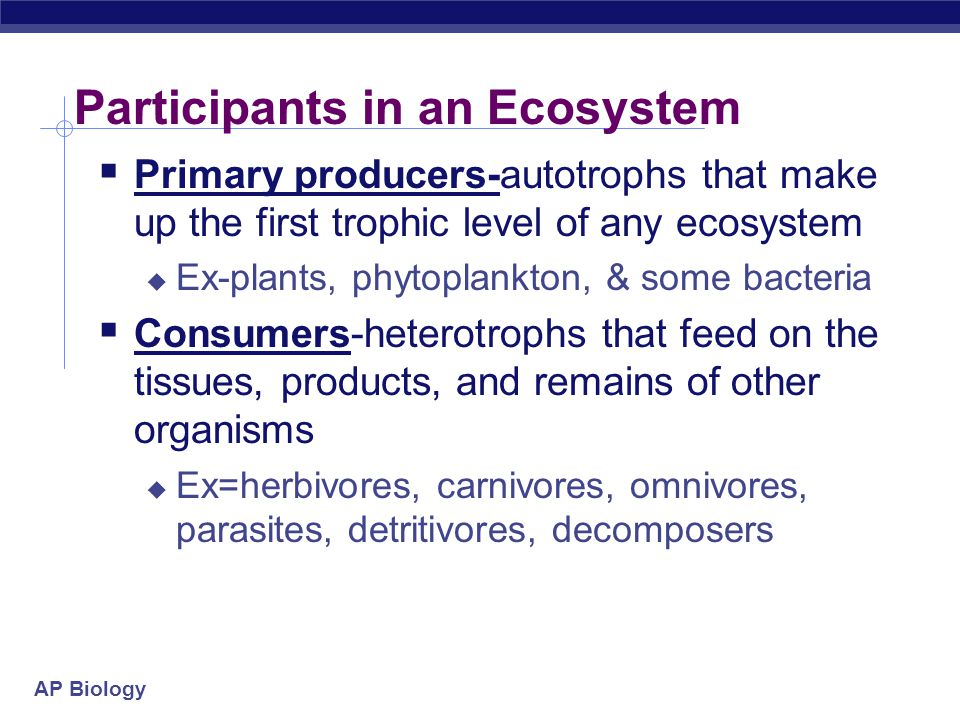 AP Biology Participants in an Ecosystem  Primary producers-autotrophs that make up the first trophic level of any ecosystem  Ex-plants, phytoplankton, & some bacteria  Consumers-heterotrophs that feed on the tissues, products, and remains of other organisms  Ex=herbivores, carnivores, omnivores, parasites, detritivores, decomposers