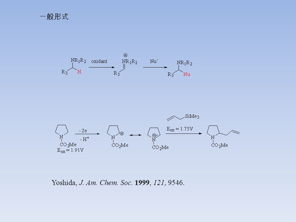 Yoshida, J. Am. Chem. Soc. 1999, 121, 9546. 一般形式