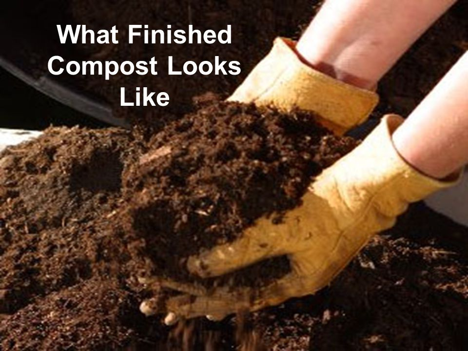 What Finished Compost Looks Like