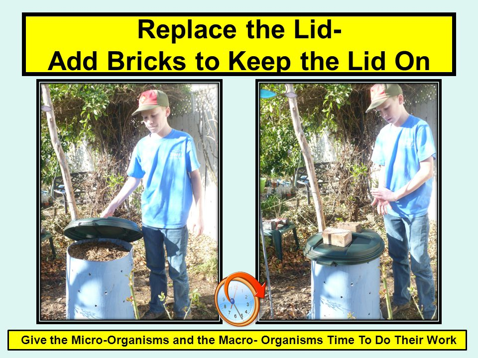 Replace the Lid- Add Bricks to Keep the Lid On Give the Micro-Organisms and the Macro- Organisms Time To Do Their Work