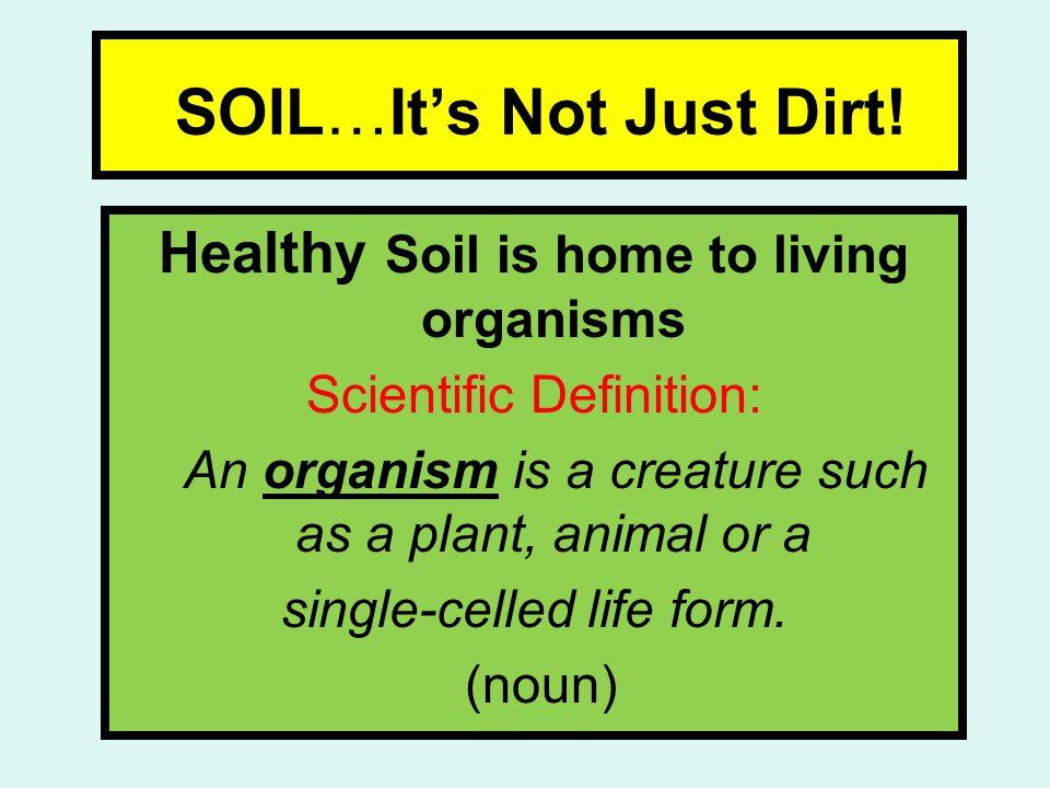 SOIL…It's Not Just Dirt.