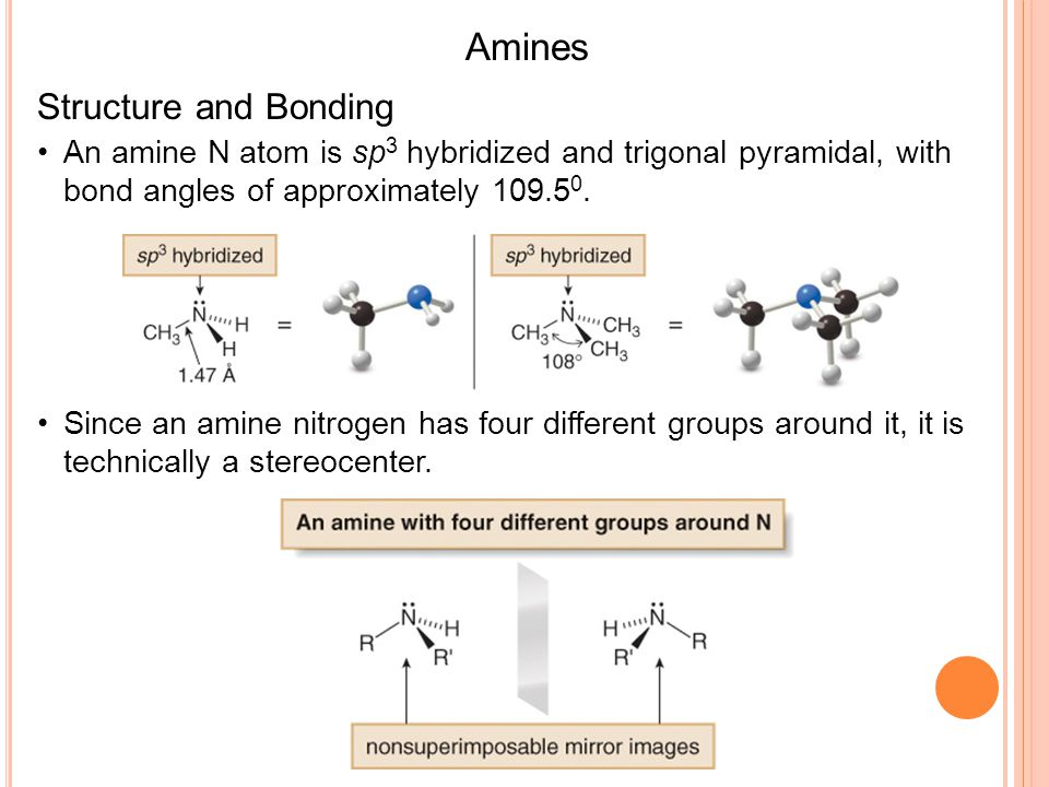 B ASICITY OF A MINES Lone pair of electrons on nitrogen can accept a proton from an acid All amines are weak bases and aqueous solutions of amines are basic 26 Methyl- ammonium ion Methylamine + + - H H CH 3 -N H-O-H CH 3 -N-H O-H + Hydroxide ion