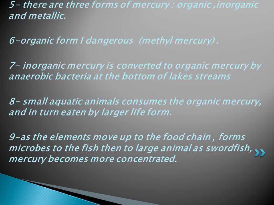 5- there are three forms of mercury : organic,inorganic and metallic. 6-organic form I dangerous (methyl mercury). 7- inorganic mercury is converted t