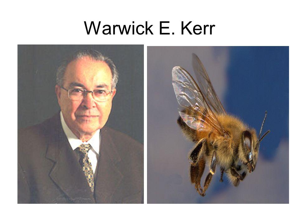 Warwick E. Kerr