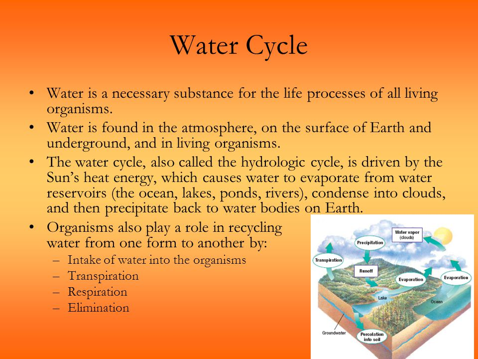 Water Cycle Water is a necessary substance for the life processes of all living organisms. Water is found in the atmosphere, on the surface of Earth a