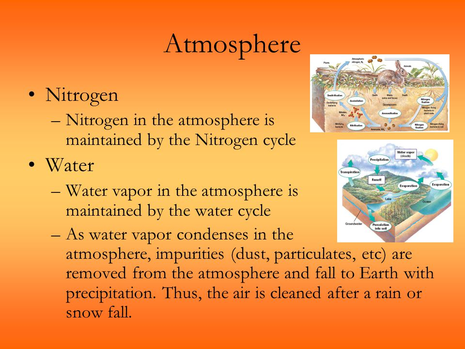 Atmosphere Nitrogen –Nitrogen in the atmosphere is maintained by the Nitrogen cycle Water –Water vapor in the atmosphere is maintained by the water cy