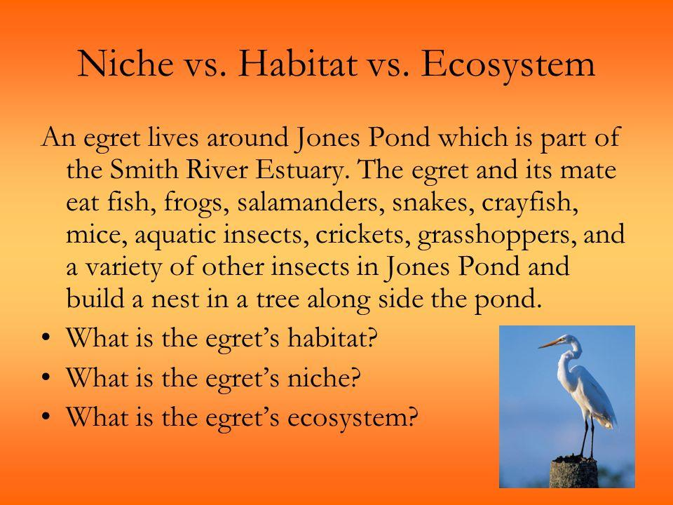 Niche vs.Habitat vs.