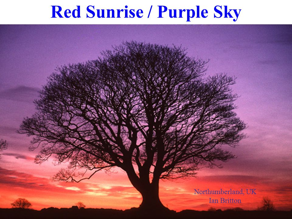 Northumberland, UK Ian Britton Red Sunrise / Purple Sky