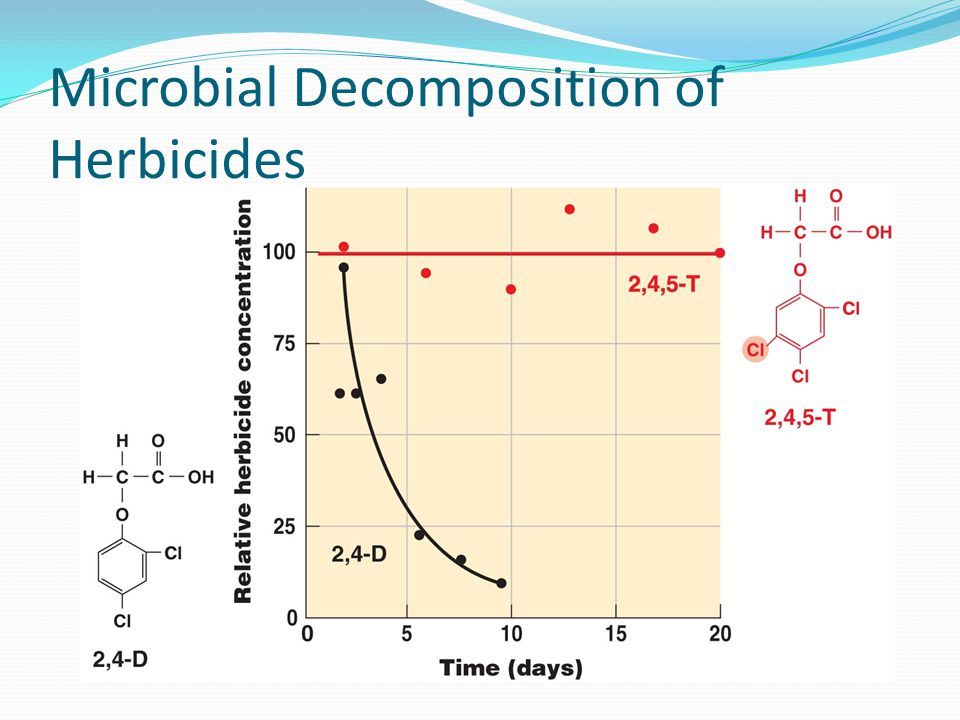 Microbial Decomposition of Herbicides